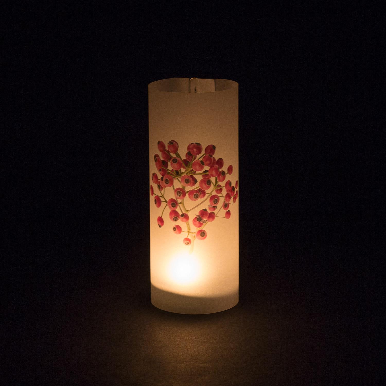 "Paper Light Shade Motiv ""Natur"" - The Special One"