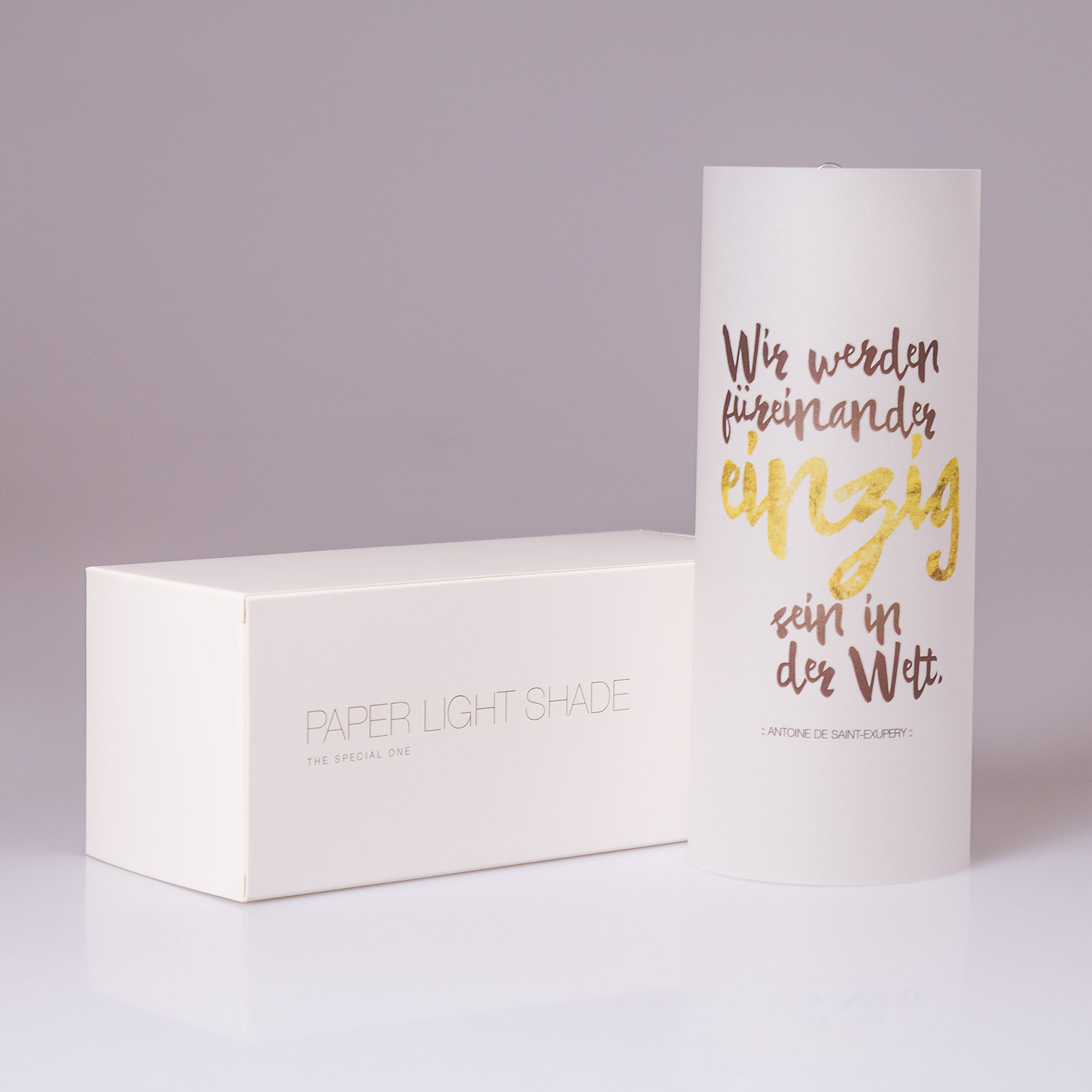 "Paper Light Shade Motiv ""Spruch"" - The Special One"